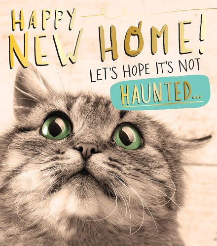 Funny Moving Cards - HOPE it's NOT Haunted - NEW Home Cards - FUNNY New Hou