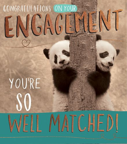 Engagement Cards - YOU'RE So Well MATCHED - FUNNY Engagement Card - ENGAGEM