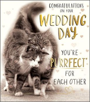 Cat Wedding Card - CONGRATULATIONS ON YOU'RE WEDDING DAY