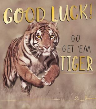 Good Luck Cards - GO GET 'EM TIGER - TIGER Card - Funny GOOD LUCK Card - Good LUCK Cards For EXAMS - Driving TEST - New JOB - Promotion
