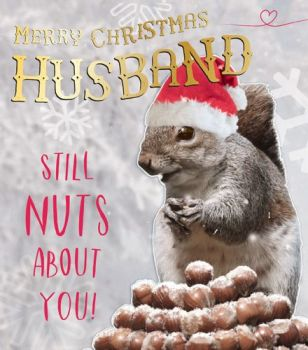 Funny Husband Christmas Card - STILL Nuts ABOUT You - HUSBAND Christmas CARDS - Christmas CARD For HUSBAND - Squirrel & Nuts CHRISTMAS Card - HUMOROUS