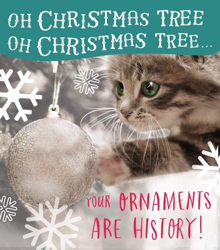 Cat Christmas Cards , Your ORNAMENTS Are HISTORY , Funny CHRISTMAS Card ,  CUTE \u0026 Funny Christmas CARDS , CUTE Cat \u0026 Tree CHRISTMAS Card , Xmas CARDS