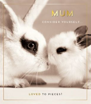 Bunny Rabbit Mother's Day Card - MUM Consider YOURSELF Loved To PIECES - Cute MUM Bunny CARD - CARD For MUM on MOTHER'S Day