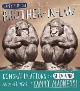 Funny Monkey Brother In Law Birthday Card - ANOTHER Year Of FAMILY Madness - FUNNY Brother IN Law CARD - BROTHER In LAW Birthday CARD - FUNNY Monkeys