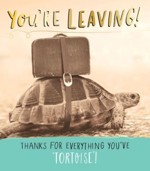 Funny Leaving Cards - Thanks for EVERYTHING You've TORTOISE - Teacher LEAVING Card - HUMOROUS Leaving Cards - ANIMAL Leaving CARD - Thank YOU Teacher