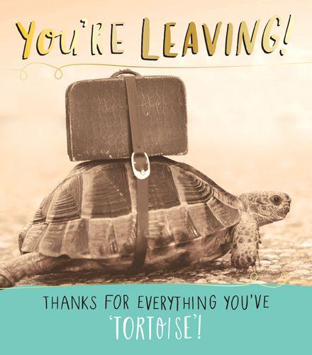 Funny Leaving Cards - Thanks for EVERYTHING You've TORTOISE - Teacher LEAVI