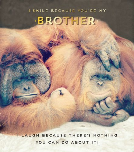 Brother Birthday Cards - I SMILE Because YOU'RE My BROTHER - Funny BROTHER