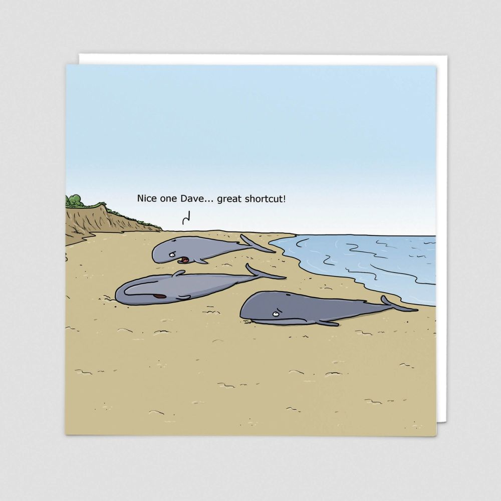 BANTER Cards - NICE One DAVE - Blank GREETING Cards - FUNNY Whale Cards - F