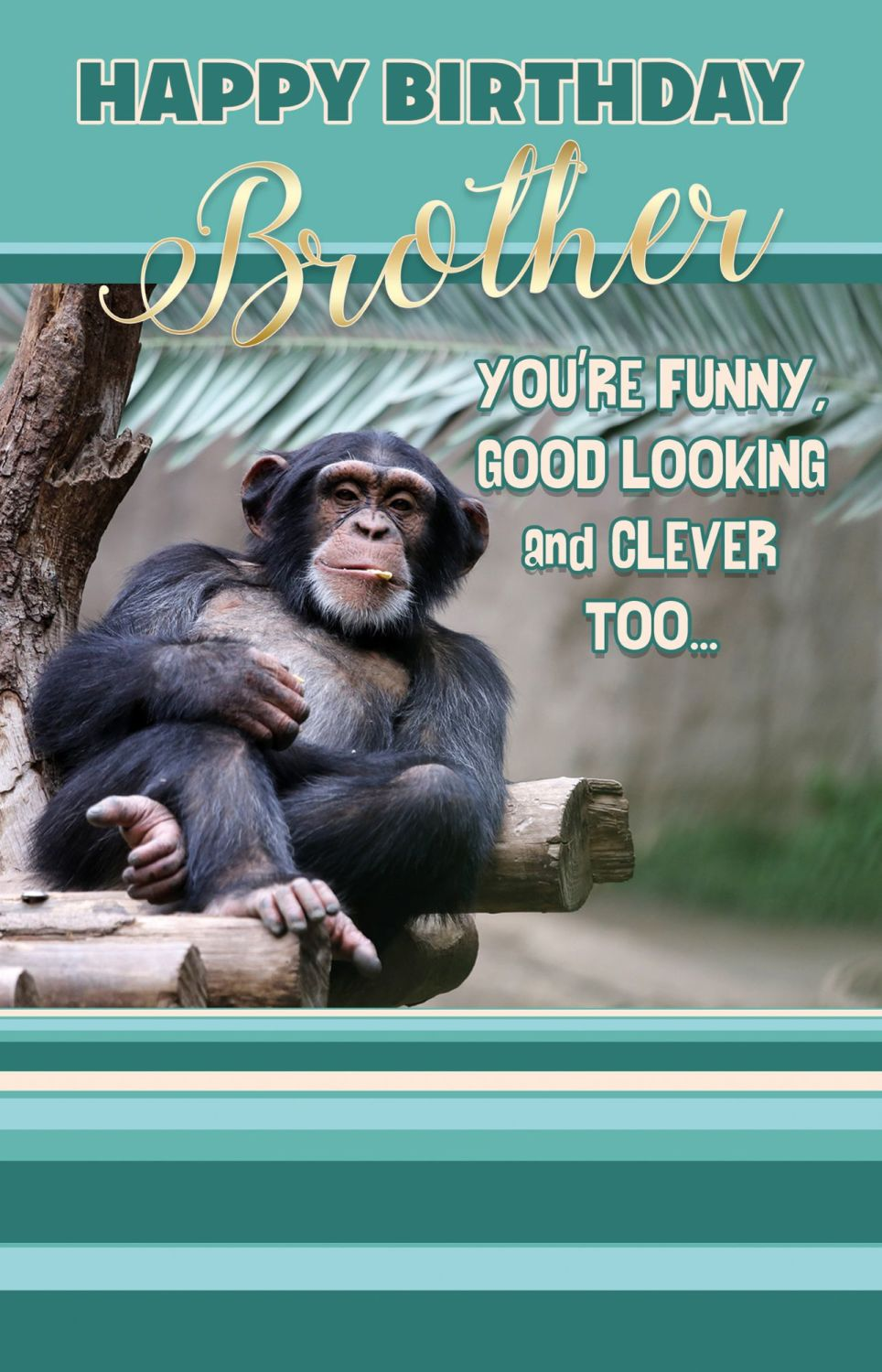Funny Monkey Brother Birthday Card - YOU'RE Funny GOOD Looking & CLEVER Too