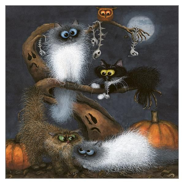 Blank Greeting Cards - CARDS For CAT Lovers - SCARY Cat Blank GREETING Card