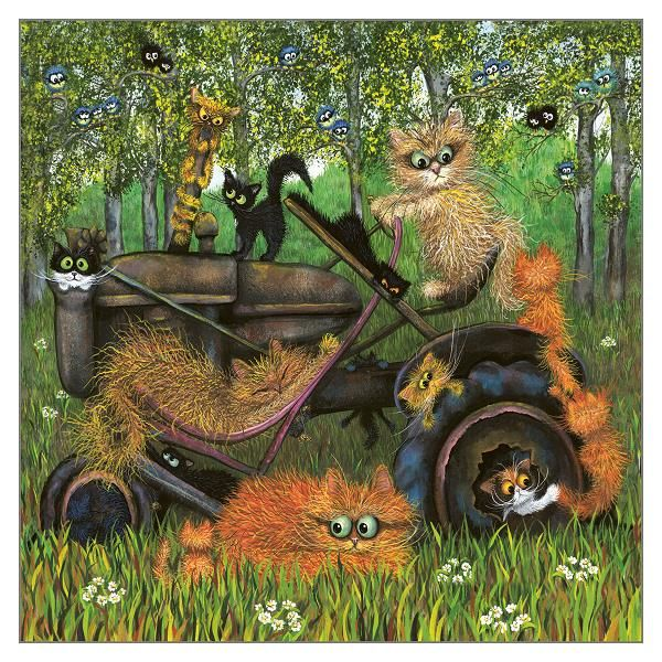 Blank Greeting Cards - CARDS For CAT Lovers - FARM Cats Blank GREETING Card