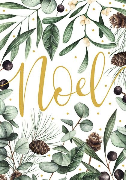Noel Christmas Cards - NOEL - Mistletoe Christmas CARDS - BEAUTIFULLY ILLUS