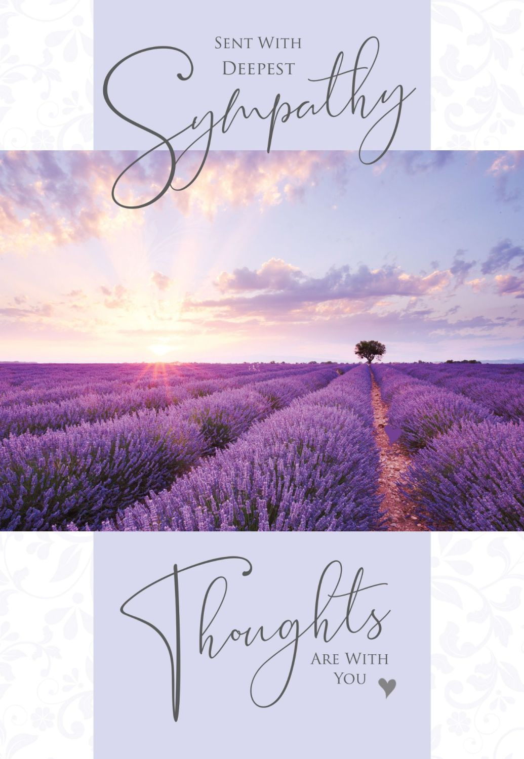 Deepest Sympathy Cards - THOUGHTS Are With YOU - LAVENDER Field SYMPATHY Ca