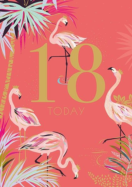 18th Birthday Cards - 18 TODAY - FABULOUS Flamingo 18TH BIRTHDAY Card - 18t