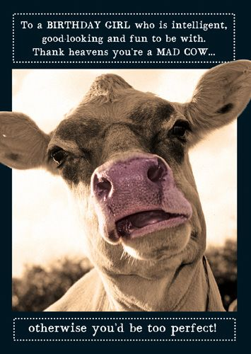 Cow Birthday Cards - THANK Heavens You're A MAD Cow - FUNNY Birthday CARDS