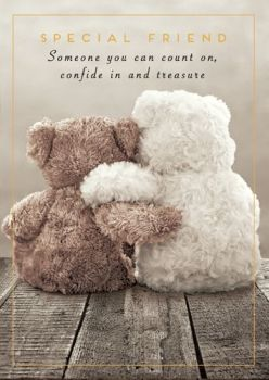 Special Friend Cards - SOMEONE You Can COUNT On - BIRTHDAY Cards FOR Friends - VERY Special FRIEND Birthday CARD - Cute TEDDY Bear Birthday CARD