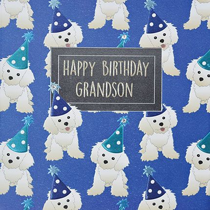 Grandson Birthday Cards - HAPPY BIRTHDAY GRANDSON - PUPPY Birthday CARD - E