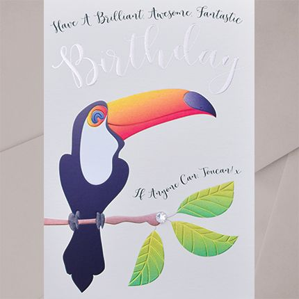 Have A Brilliant Awesome Birthday -  EMBELLISHED Birthday CARDS - Toucan BI