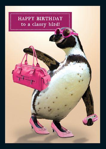 Funny Best Friend Birthday Cards - HAPPY  BirthdayTo A CLASSY Bird - FUNNY