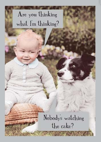 Funny BIRTHDAY Cake Cards - ARE You THINKING What I'm THINKING - Vintage ST