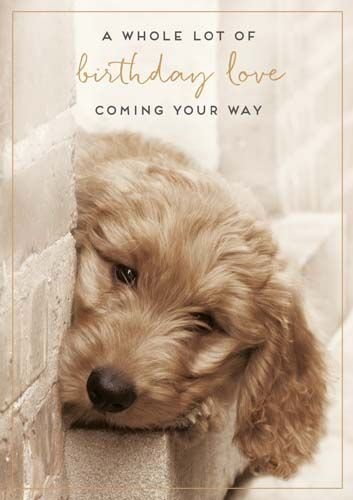 Birthday Cards For Dog Lovers - BIRTHDAY Love COMING Your WAY - Cute DOG Bi