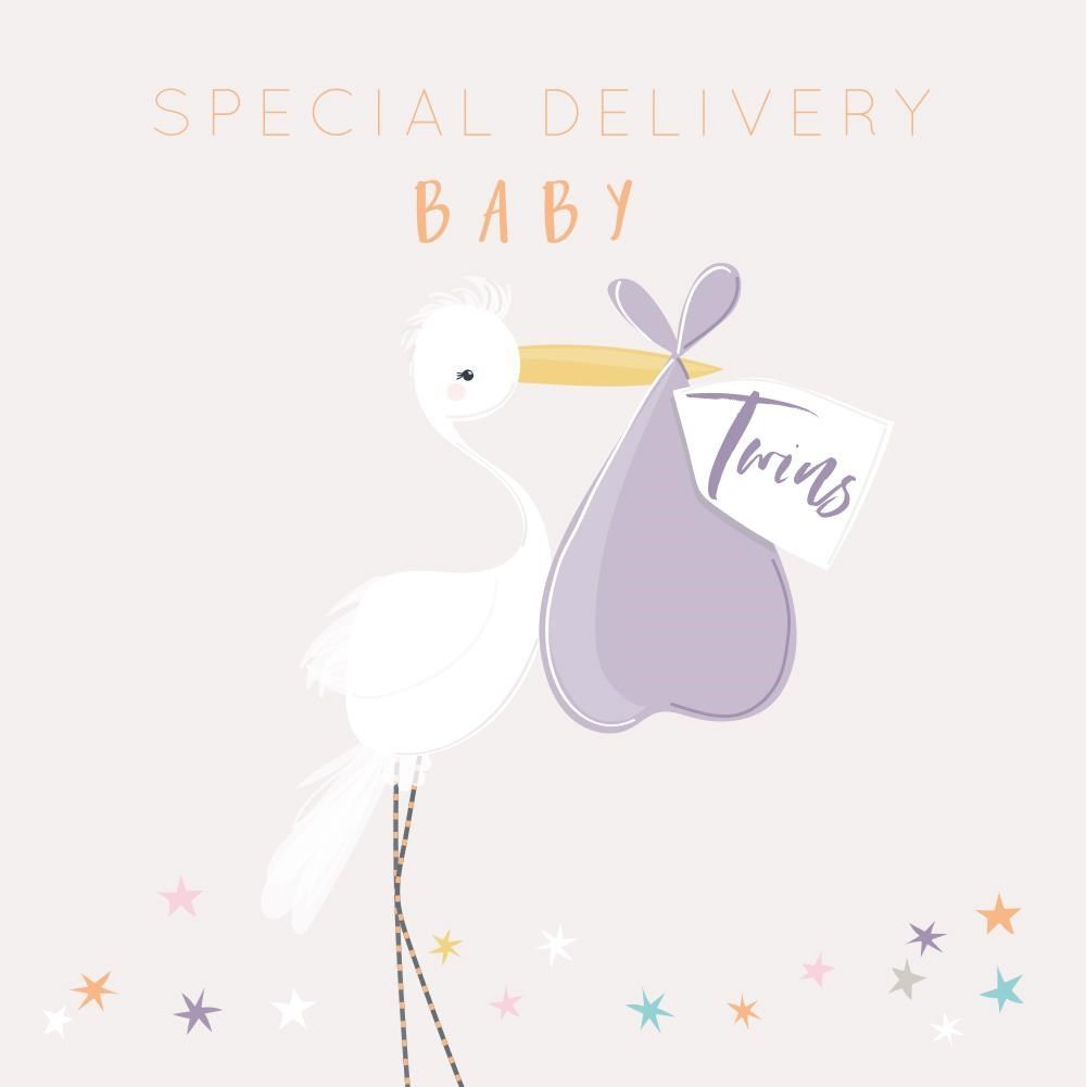 Special Delivery Baby Twins Greeting Card - SPECIAL Delivery - Pretty STORK