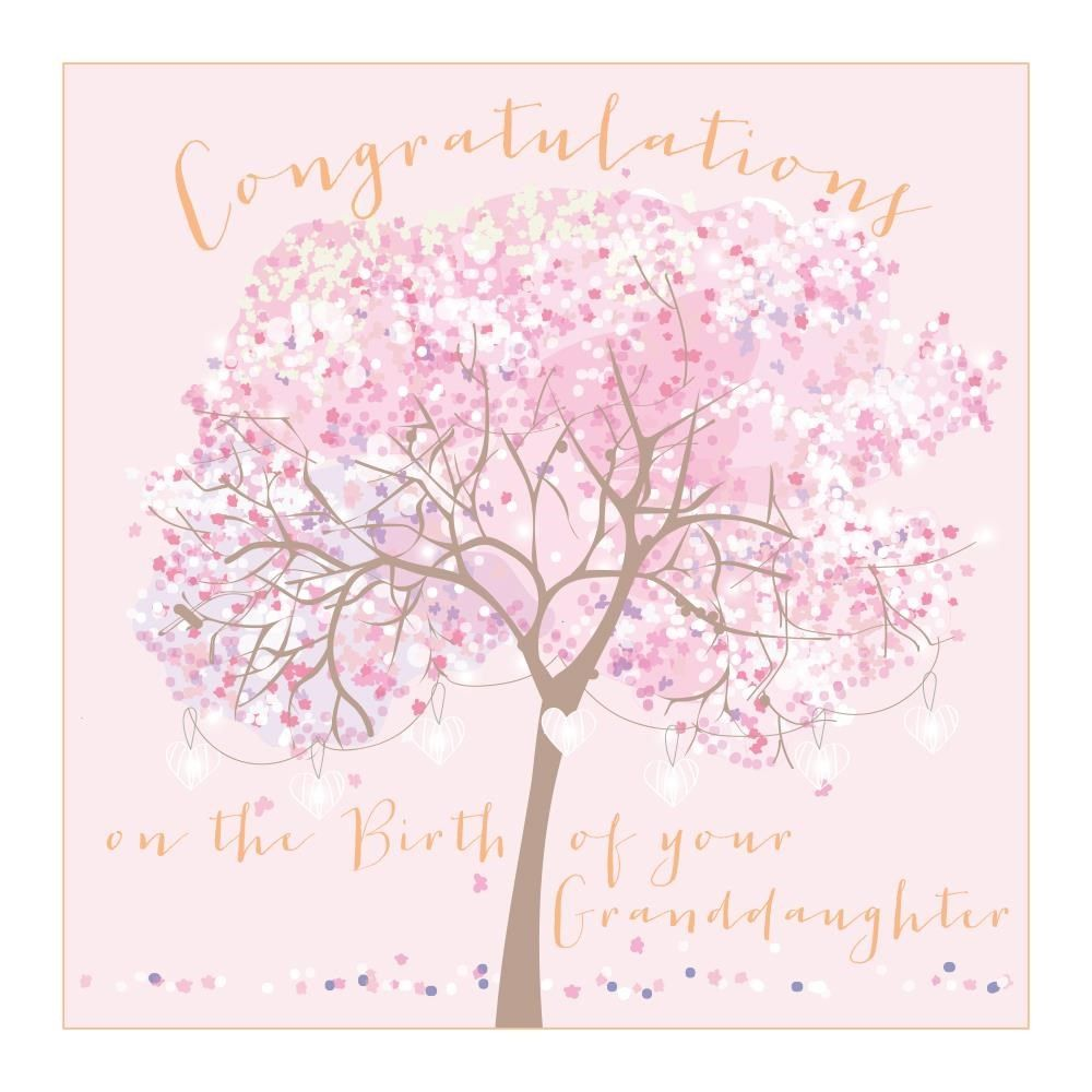 New Granddaughter Congratulations Card - LARGE Boxed GREETING Card - CONGRA
