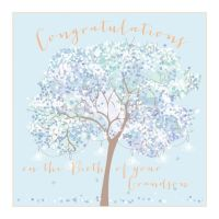 New Grandson Congratulations Card - LARGE Boxed GREETING Card - CONGRATULATIONS On The BIRTH - Embellished New GRANDSON Cards - NEW Baby GRANDSON