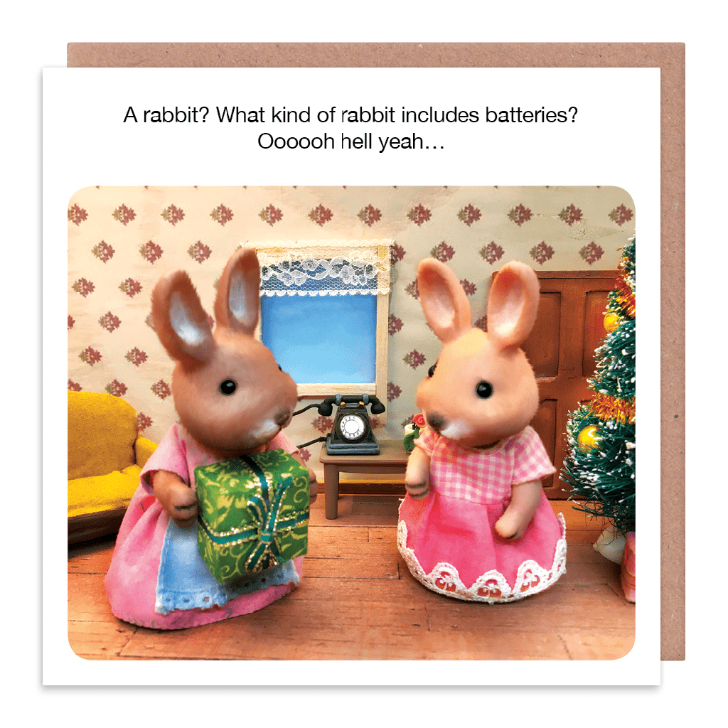 Naughty Christmas Cards For Her - WHAT Kind Of RABBIT Includes BATTERIES -