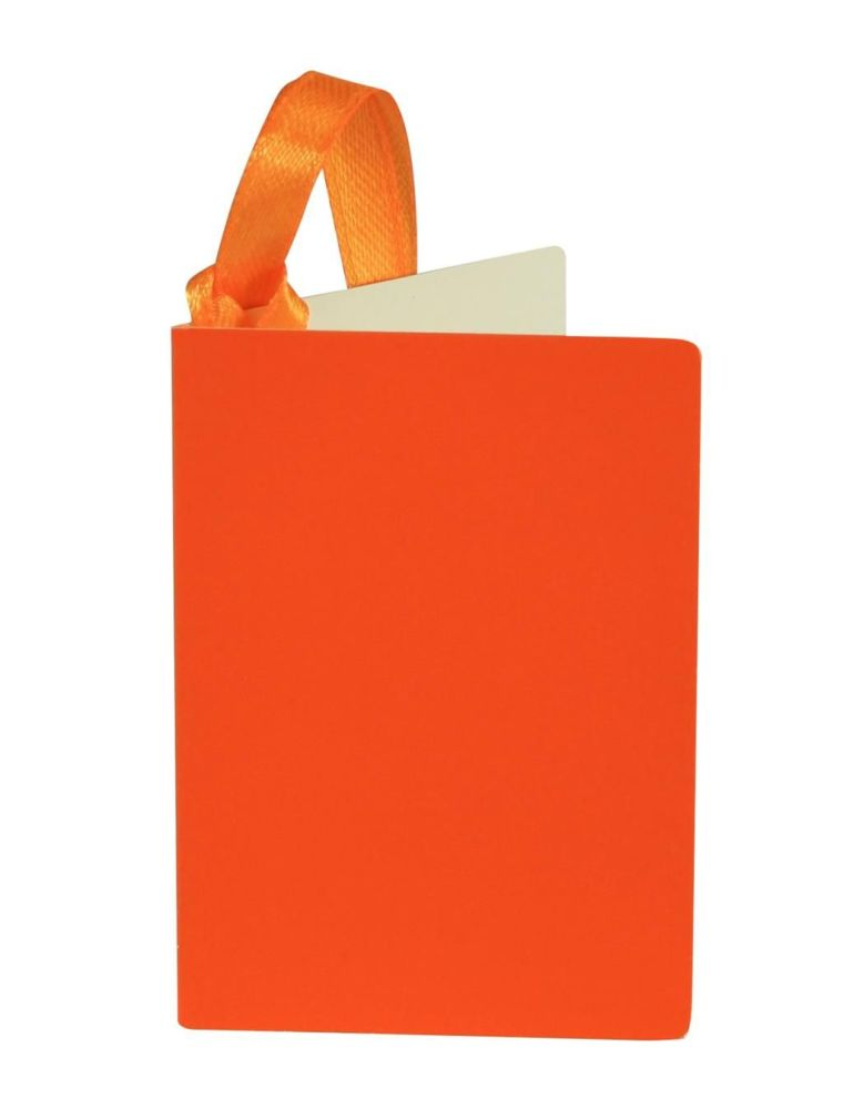 Gift Tags - ORANGE GIFT Tags 3 PACK - Orange Gift TAGS - TAGS With RIBBON A