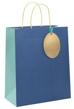 Blue Gift Bags - LARGE GIFT Bags - RECYCLABLE Gift BAG - Birthday GIFT Bags - BLUE Paper GIFT Bags