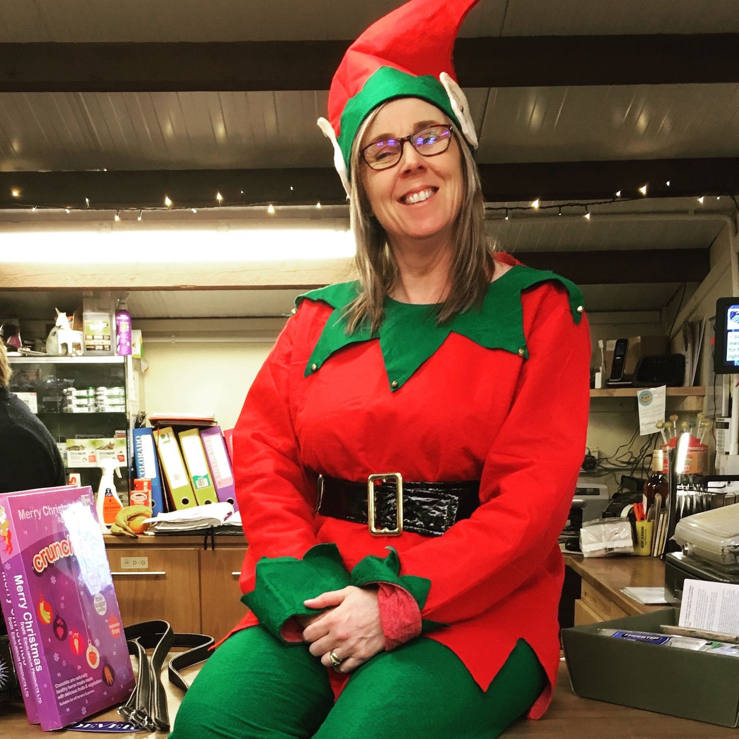 Riseholme's Elf on the Shelf