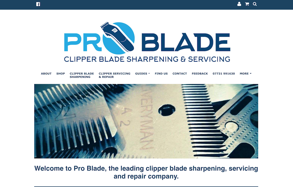 Pro Blade Website