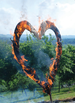 Burning Love