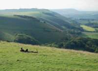 View from the scarp at Devil's Dyke, near Brighton and Hove