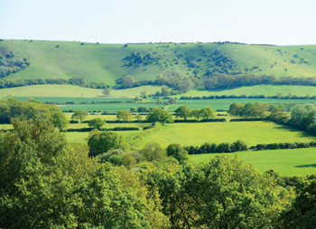 View of the Downs from Lodge Hill, Ditchling