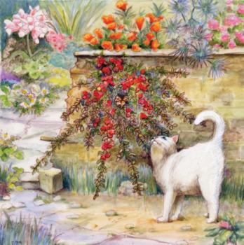 white cat2 sm