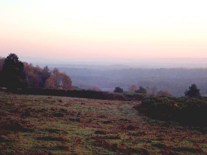 Ashdown Forest autumn dusk