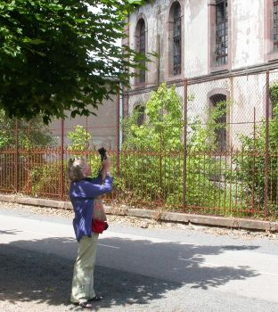 Amanda Davey photographing a French church
