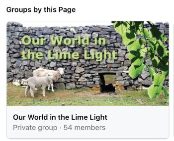 Our World in the Lime Light image (our group)