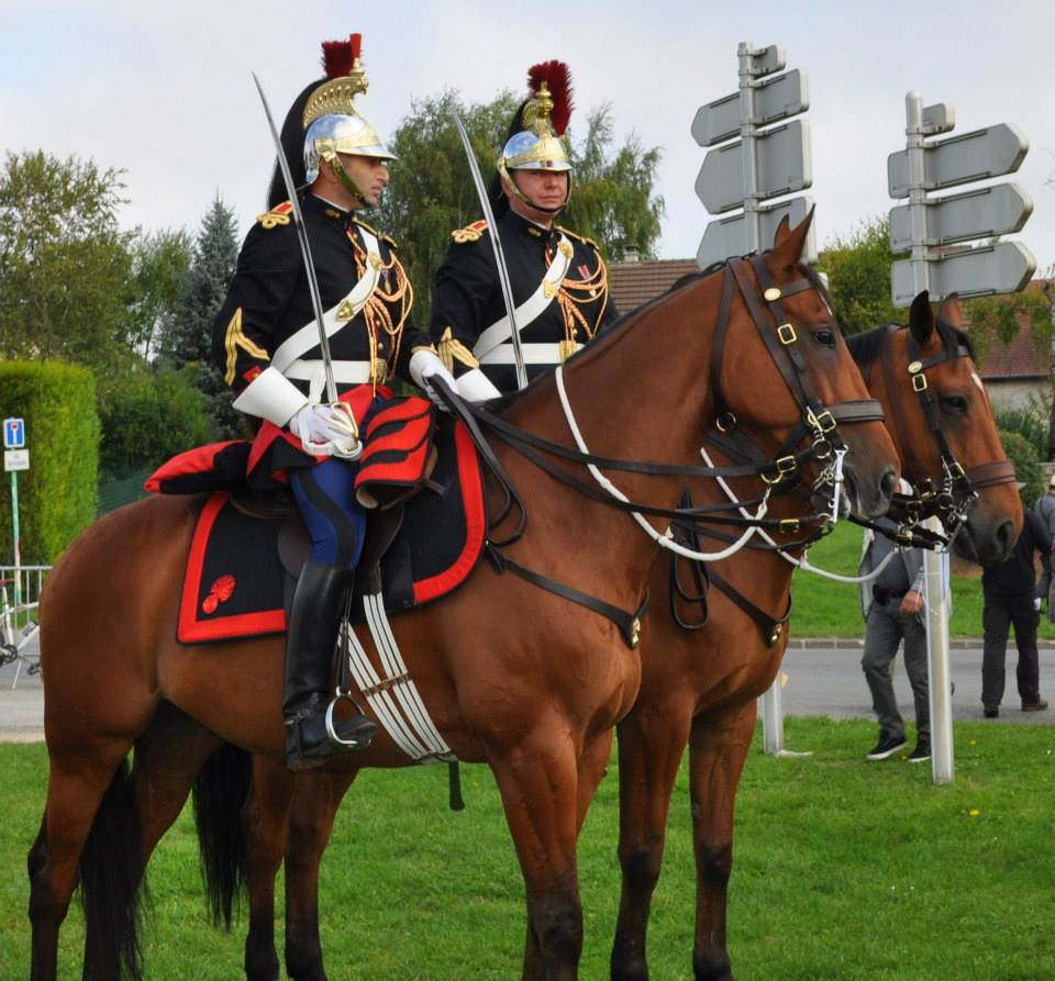 2015 - French Cavalry