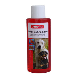 Beaphar FIPROtec Spot On Vet Strength for Extra Large Dogs 1 Treatment