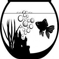 <!-- 005 -->FISH