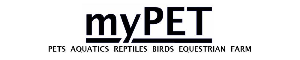 mypetdirect, site logo.