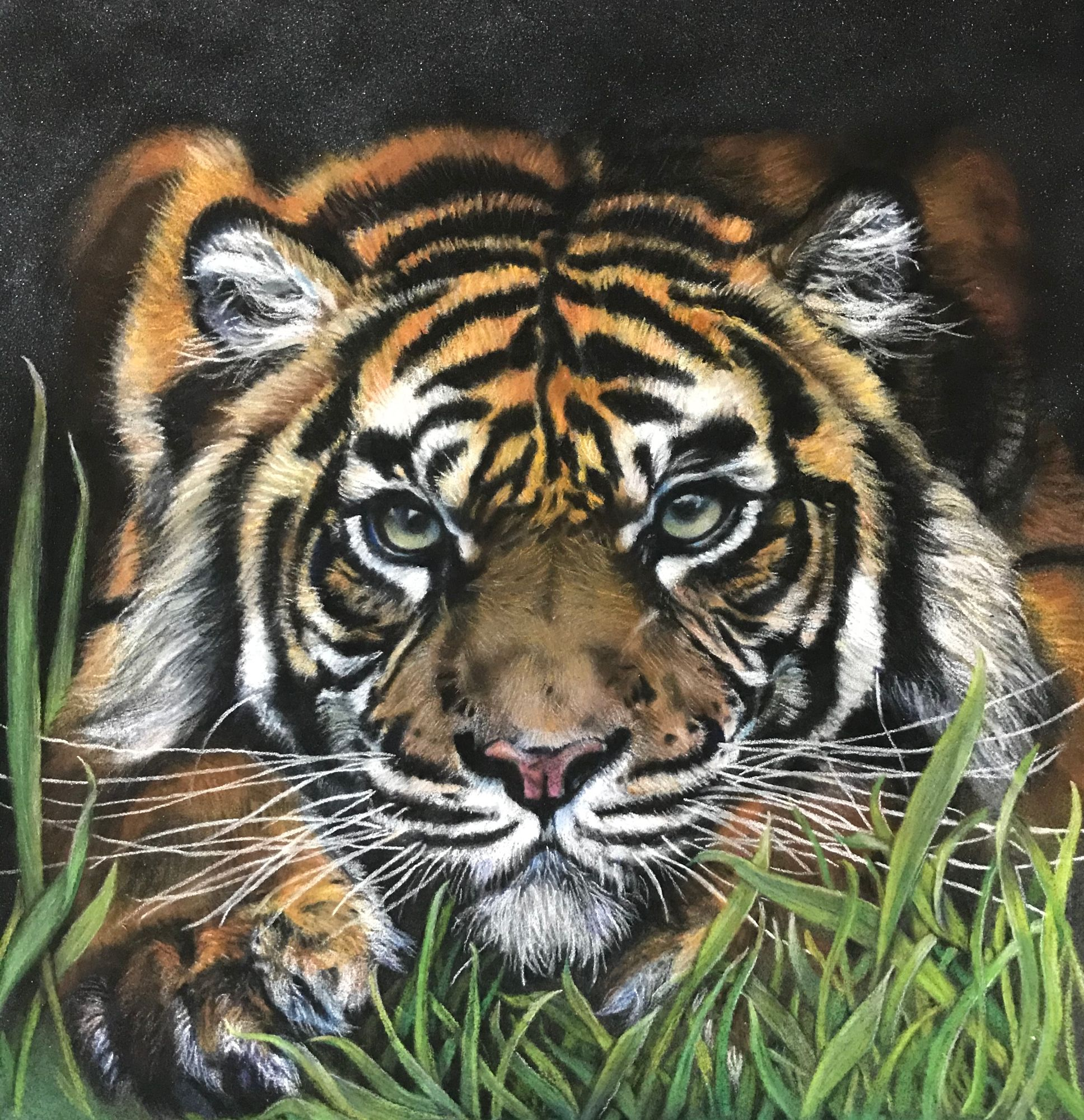 tiger_in_grass_painting