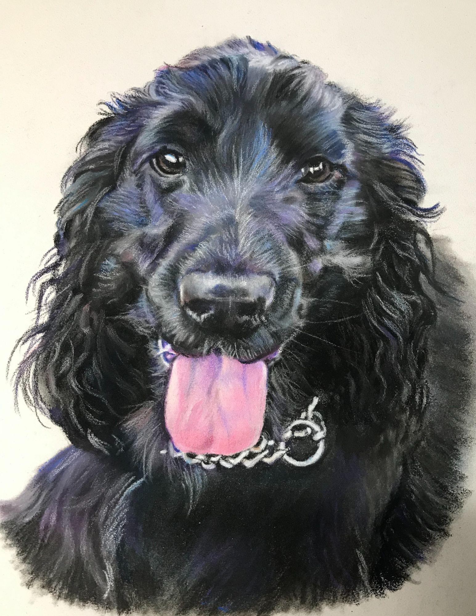 Dog Painting - Black Spaniel - Brooke