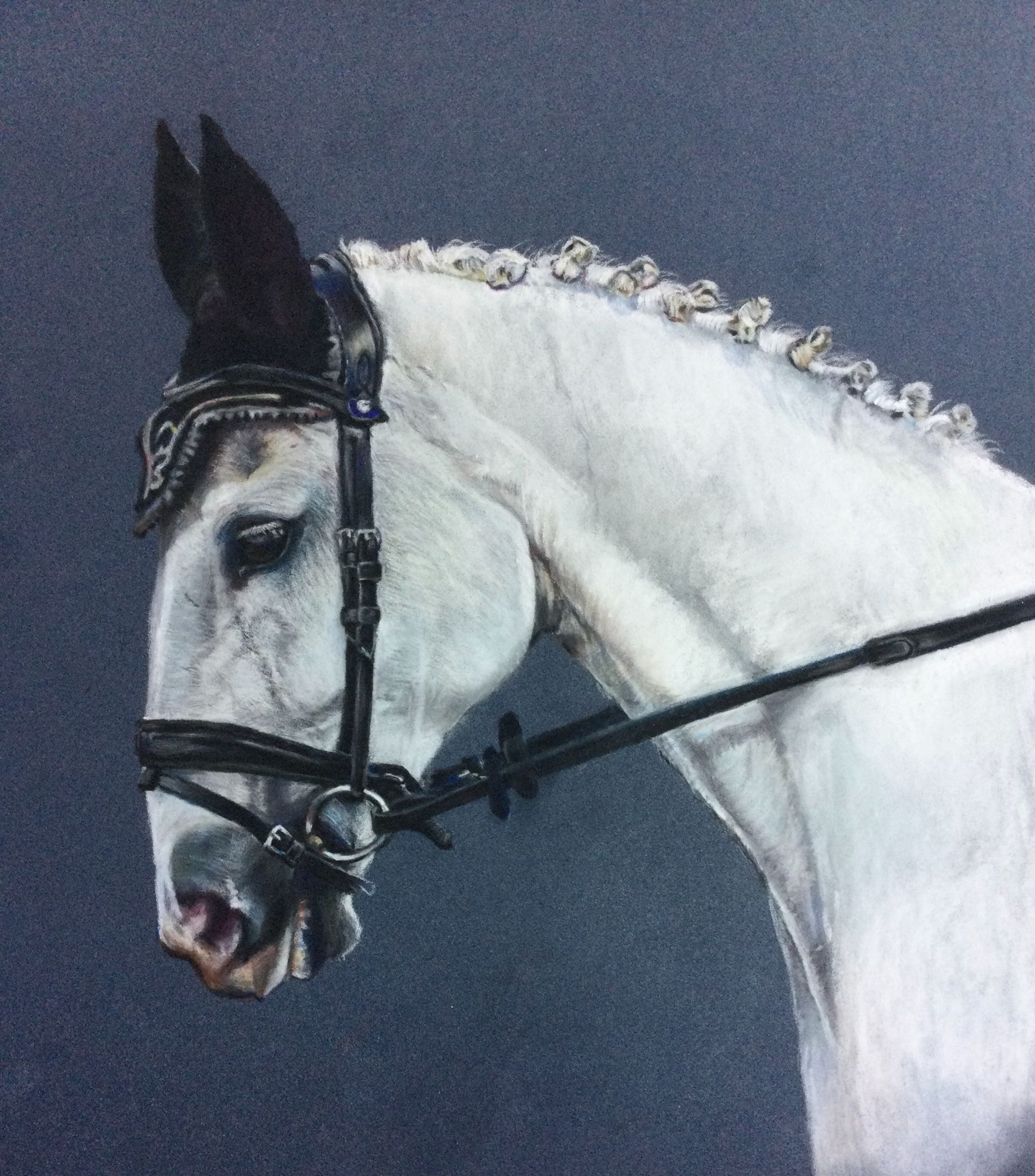 Horse Painting - Grey Horse - Bouncer