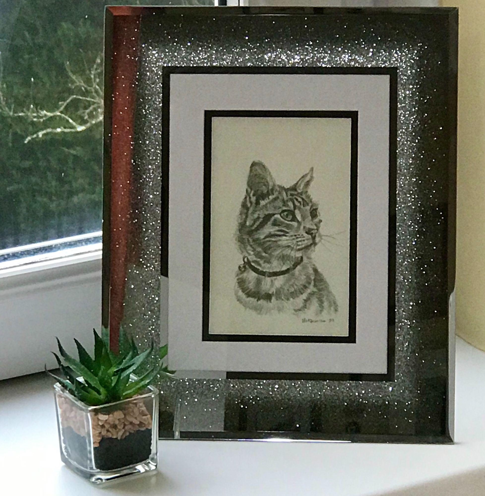 Cat Pet Portrait In Pencil