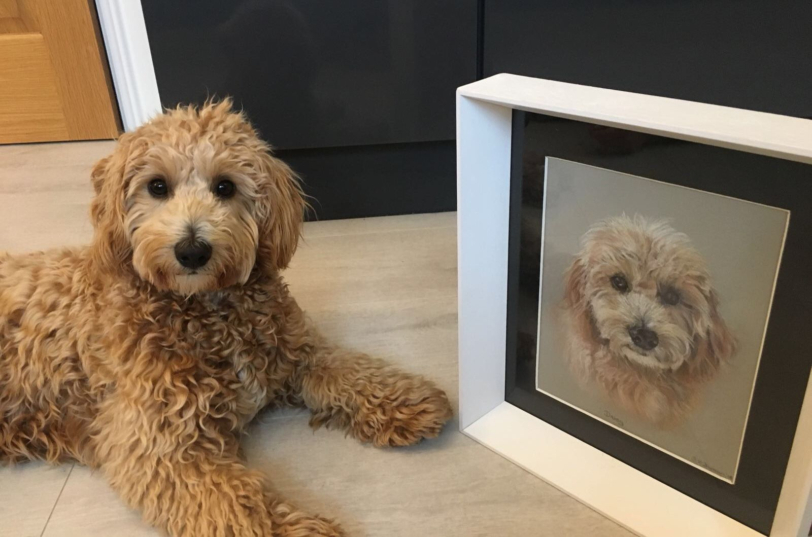 Comnmission a pet portrait