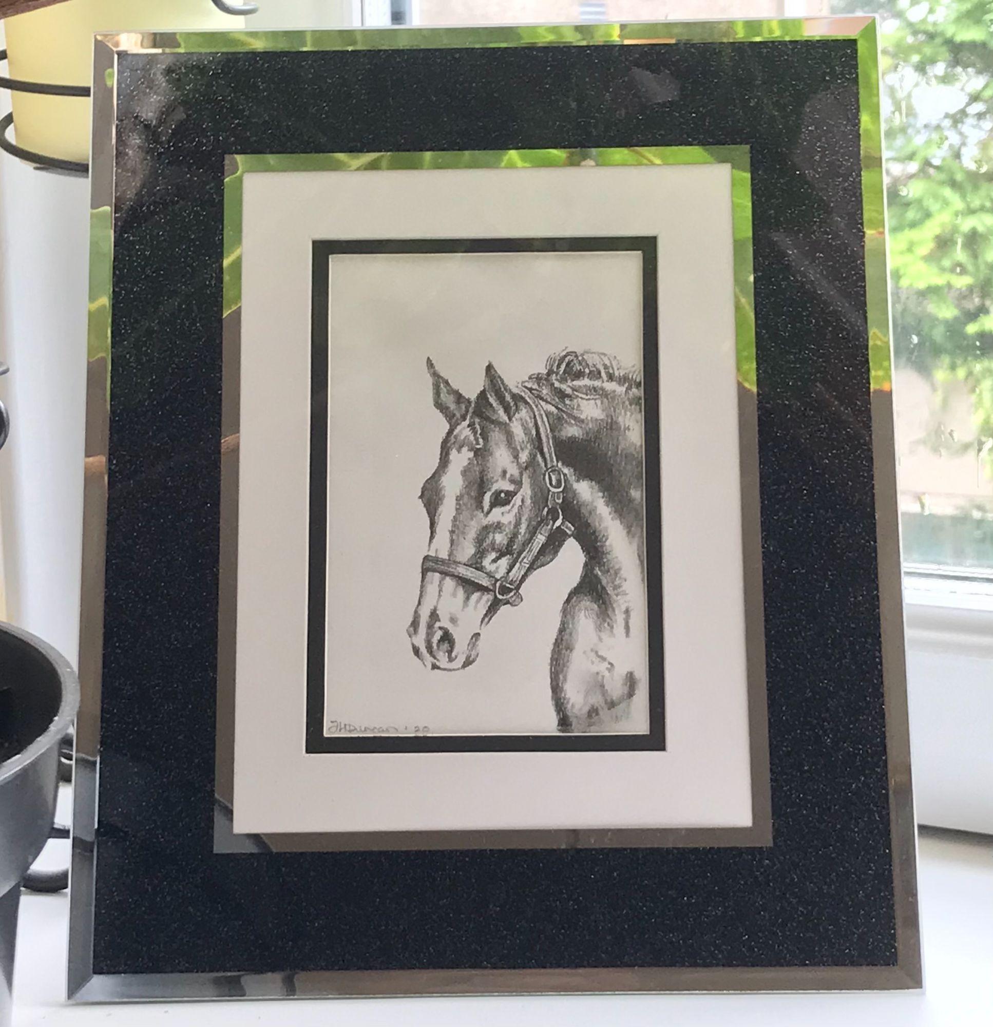 Horse Pencil Drawing